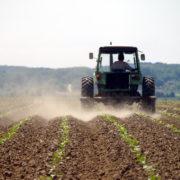 zemlja oranica njiva poljoprivreda