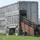 transport-goveda