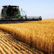 poljoprivreda