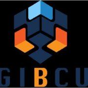 digi-b-cube-picture