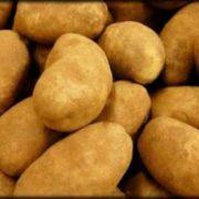 krompir-111