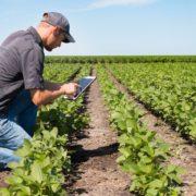 poljoprivreda-modernizacija